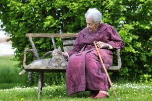 La Vecchietta e il suo Gattino