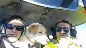 JS + Pilots N Paws 5