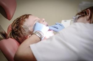 zootherapie-chez-le-dentiste-4