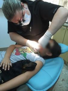 zootherapie-cachee